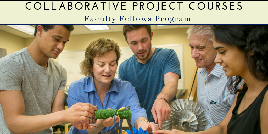 Faculty Fellows Program.