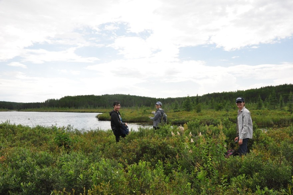 Team members Vincent Wang, Karen Jin, and Kateri Salk visit Lake 979, the site of an experiment to determine the effects of dam building on greenhouse gas production and mercury mobilization.