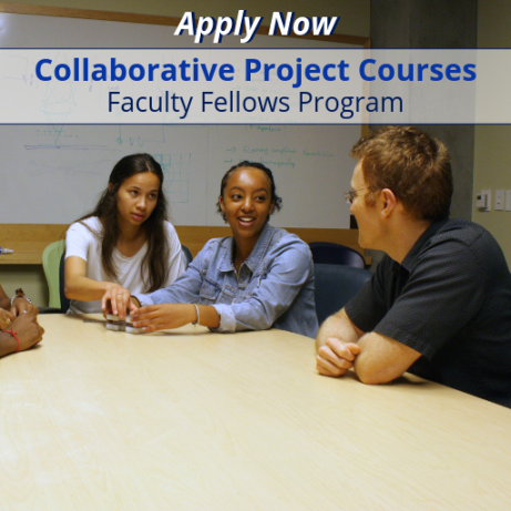 Apply Now: Faculty Fellows Program.
