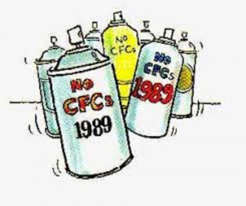 no CFCs 1989
