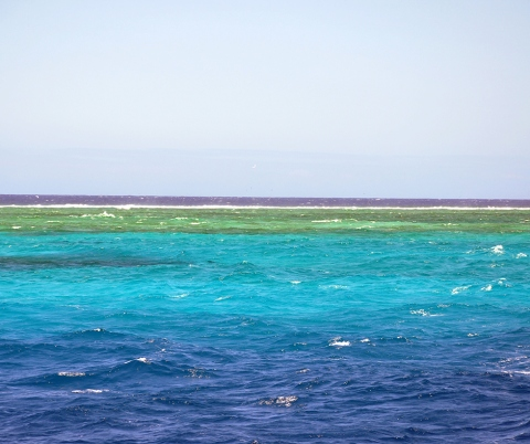 Second Longest Coral Reef in the World.
