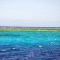 Second Longest Coral Reef in the World, by Eustaquio Santimano, licensed under CC BY-NC-SA 2.0